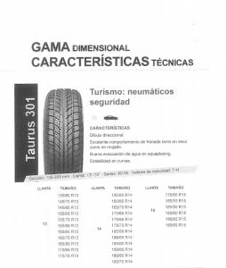 neumatico-taurus