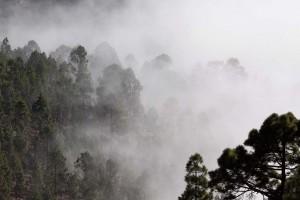 Consejos-para-conducir-con-niebla-recambios-Infra