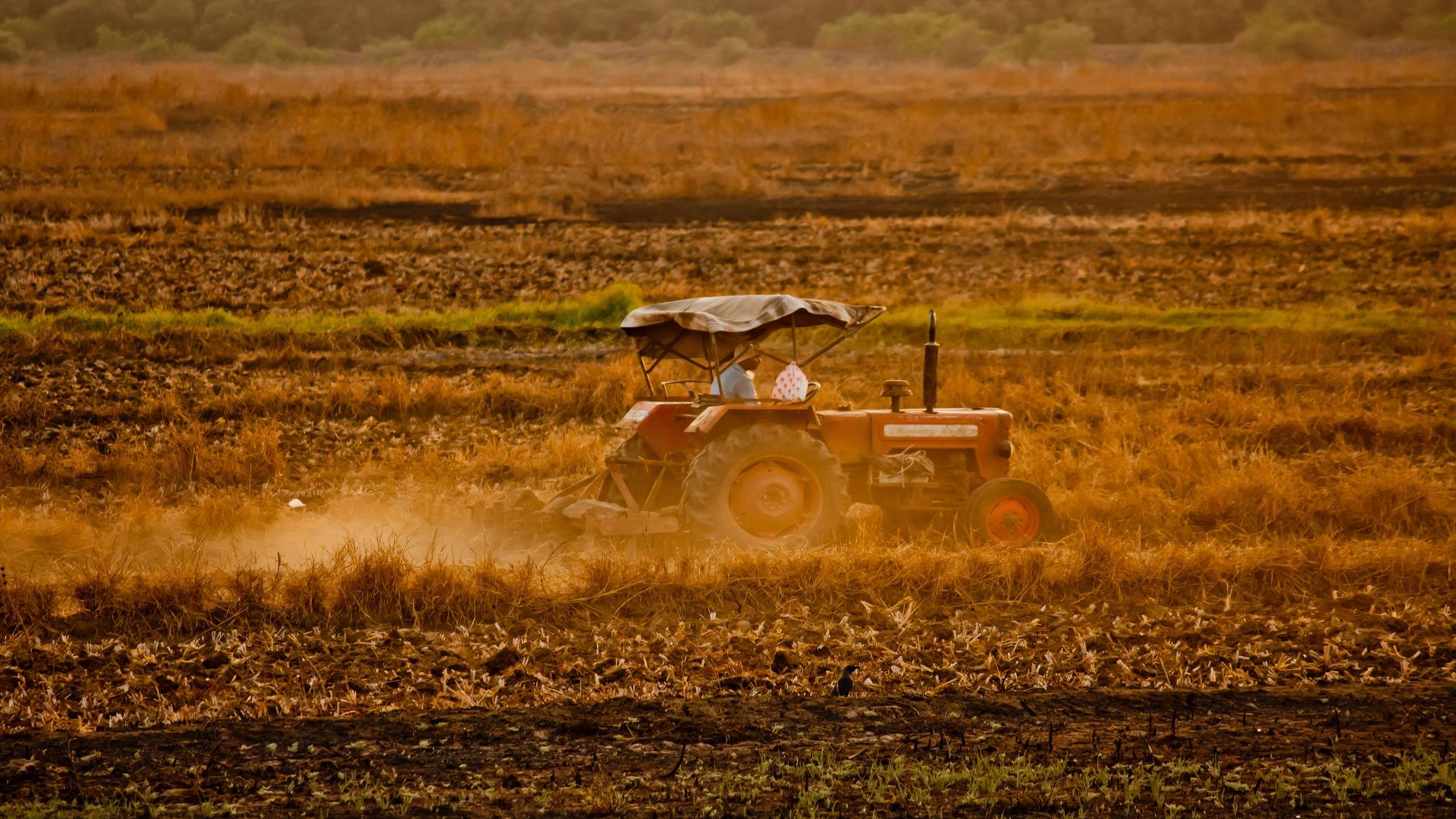 Los agricultores y ganaderos se podrán beneficiar de reducciones para la Renta 1920